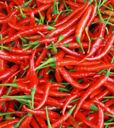 red chili background  photo