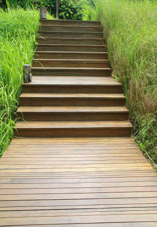 wood stair way on green garden  photo