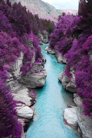 landscape: purple forest and blue stream  Stock Photo