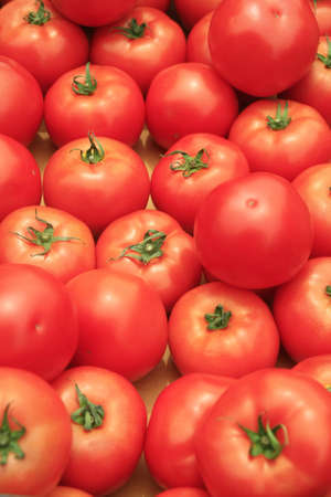 Tomato background  photo