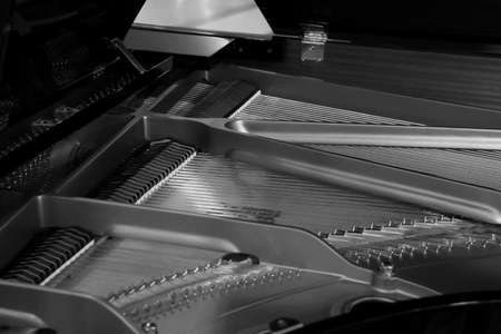 Piano strings and hammer detail black and white  photo