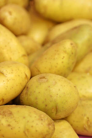 close up fresh potato in market  photo