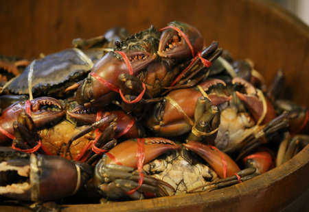 crab pot: red crab in wood pot, seafood
