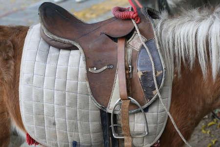 horse saddle: closeup horse saddle in position