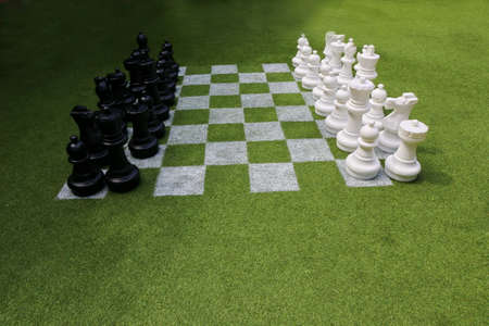 green board: Chessboard and chess pieces on the grass in the garden