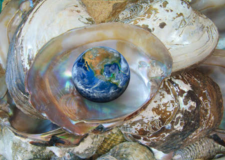 the earth with oyster