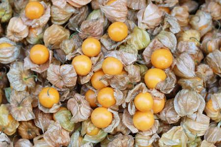 grosella: uchuva, Fondo de la fruta