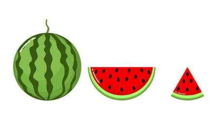 watermelon Isolated on white background. set icons. Vector illustration.