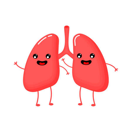cute and funny Human Lungs anatomy icon. flat cartoon characters style. bright and cute. Isolated on white background. vector illustration.
