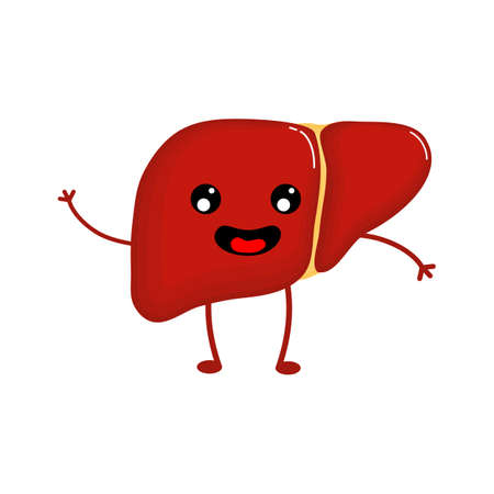 cute and funny Human liver anatomy icon. flat cartoon characters style. bright and cute. Isolated on white background. vector illustration. Illusztráció