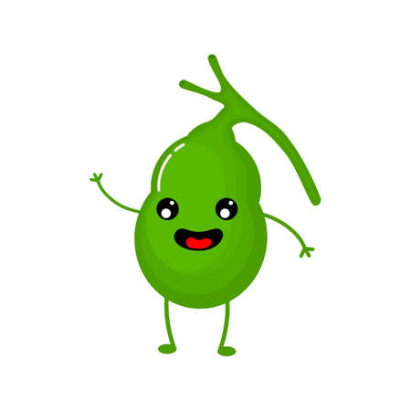 cute and funny Human gallbladder anatomy icon. flat cartoon characters style. bright and cute. Isolated on white background. vector illustration. Ilustrace