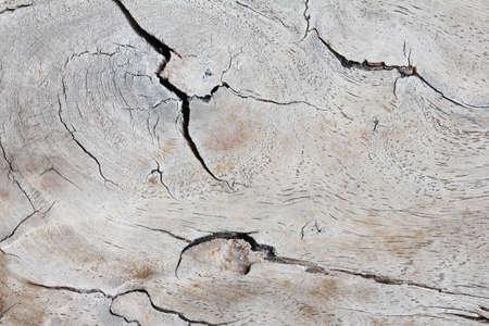 marquetry: Fondo de madera Foto de archivo