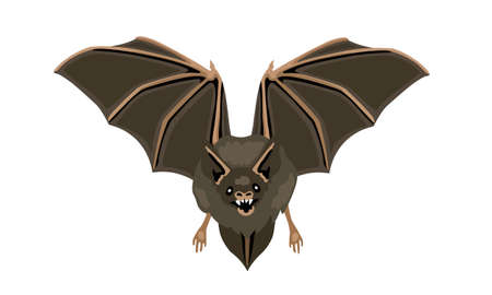 Flying bat horror halloween symbol. Disease carrier animals, virus source.