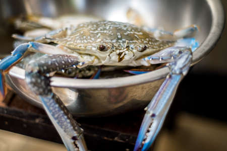Fresh Blue crabs in a bowl