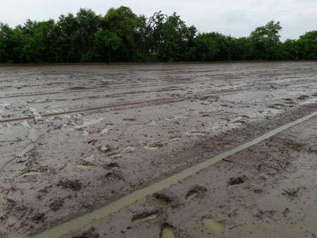 muddy: Muddy fields to prepare for farming.