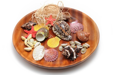 alluvial: A beautiful alluvial of different seashells laying on wood dish