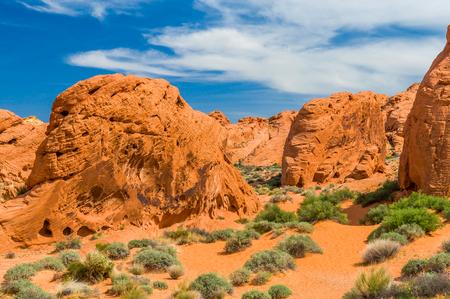 Stone desert at USA West Imagens