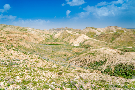 Spring in the mountains near Dead Sea Imagens