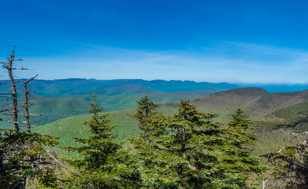 Panorama of Catskill Mountains as seen from Slide Mountain