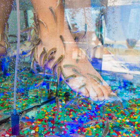 Treating kids with fish spa Stock Photo