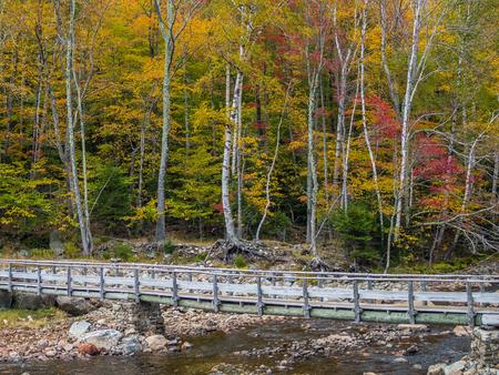 Old wood pedestrian bridge over the mountain river
