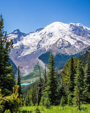 View of Mount Rainier from Sunrise trail Reklamní fotografie