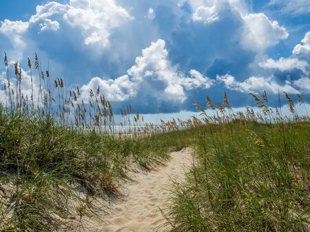 Stock photo of sand dunes at the ocean cost