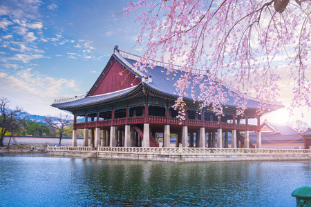 gyeongbokgung palace in spring, South Korea. 版權商用圖片 - 69914754