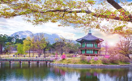 春、韓国の景福宮。