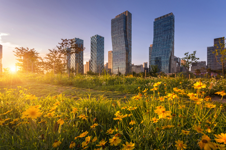 Traditional and modern architecture of seoul city in sunset, central park in songdo International business district, Incheon South Korea.