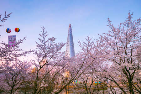 Seoul, South Korea - April 07, 2019:Seokchon lake park  and cherry blossom tree and Lotte world tower in spring. seoul, south korea. 新闻类图片