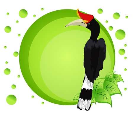 Vector illustration of a bird on colorful background  Vector
