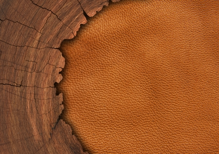 wood on leather background  photo