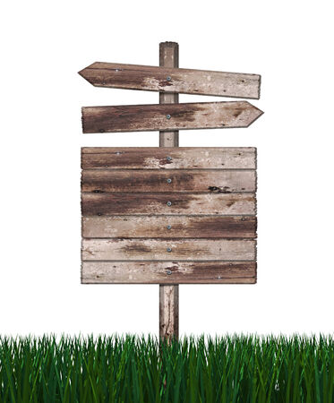 Wood sign in green grass isolated on a white background  photo