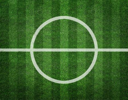 grass field: soccer grass field