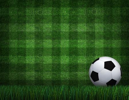 grass field: soccer football on grass field