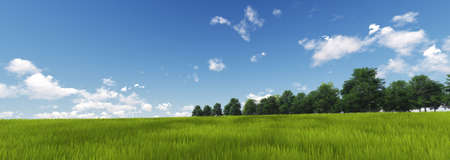 panoramic sky: Panoramic Green Grass with cloud and the blue sky. 3d render