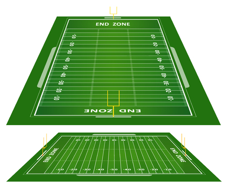 football referee: grass textured American football field