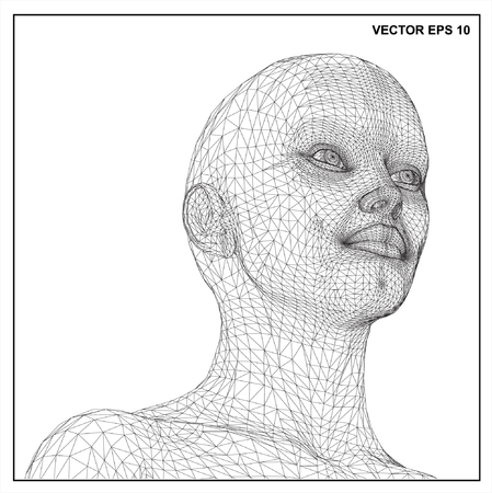 3d head of a woman in a wireframe view.