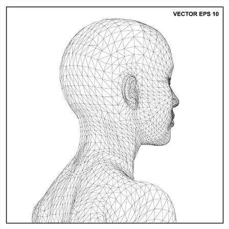 conceptual: Vector concept or conceptual 3D wireframe Cartoon human female
