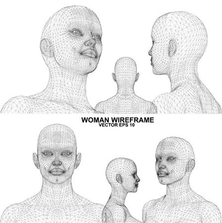cgi: Vector concept or conceptual 3D wireframe Cartoon human female