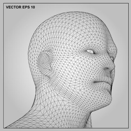 artificial model: Vector concept or conceptual 3D wireframe human male or man head isolated on gray background