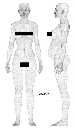 naked female body: A computer generated rendering of a young naked woman 3d model Illustration