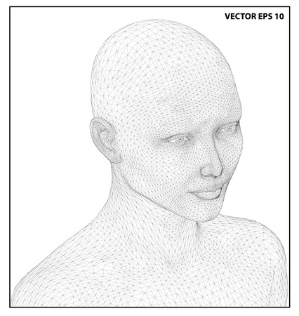 human head: Vector concept or conceptual 3D wire frame human female head isolated on white background Illustration