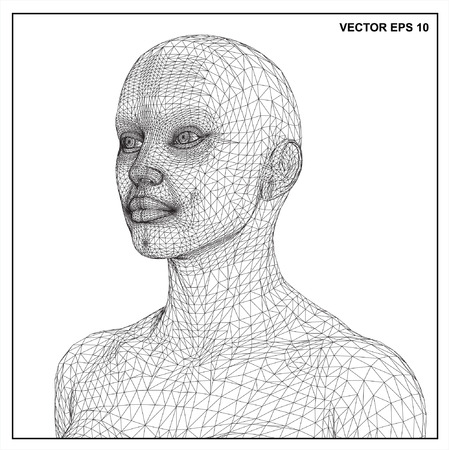 nudity: Vector concept or conceptual 3D wire frame human female head isolated on white background Illustration