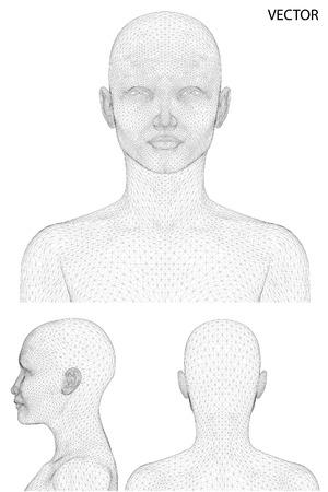 Vector concept or conceptual 3D wireframe Cartoon human female