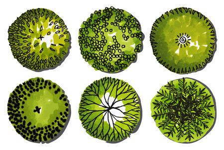Un conjunto de árboles - vista desde arriba. utilizar en su design.vector Ilustración del paisaje Ilustración de vector