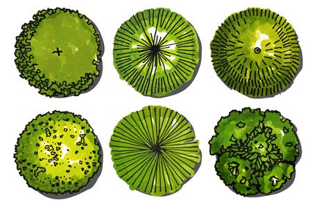 Una serie di Alberi - vista superiore. utilizzare nella design.vector illustrazione paesaggio Vettoriali