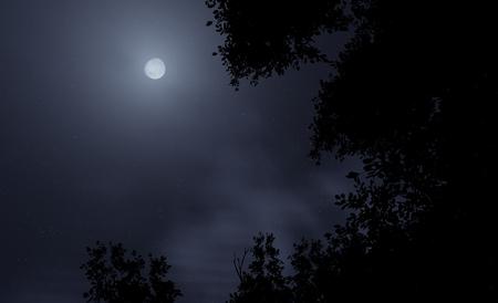 dark sky: Halloween type of a full moon cloudy sky.
