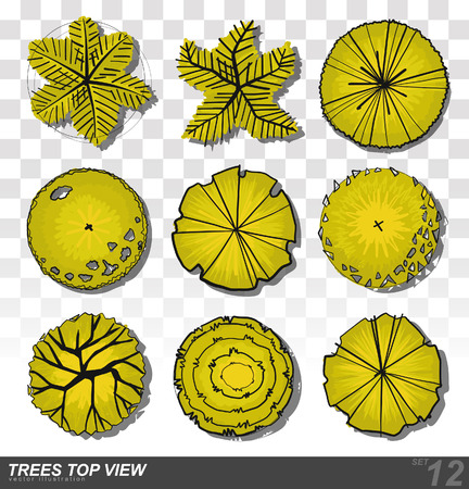 A set of Trees - top view. use in your landscape design. illustration Vectores
